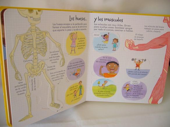 ¡Mira debajo! Tu cuerpo, libro sobre el cuerpo humano para niños